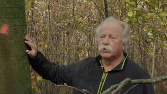 Stefan Landolt