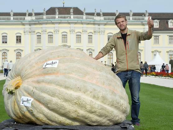 Beni Meier in Ludwigsburg mit dem 1054-Kilogramm-Kürbis, mit dem er sich vergangenes Jahr den Weltrekord holte (Archiv).