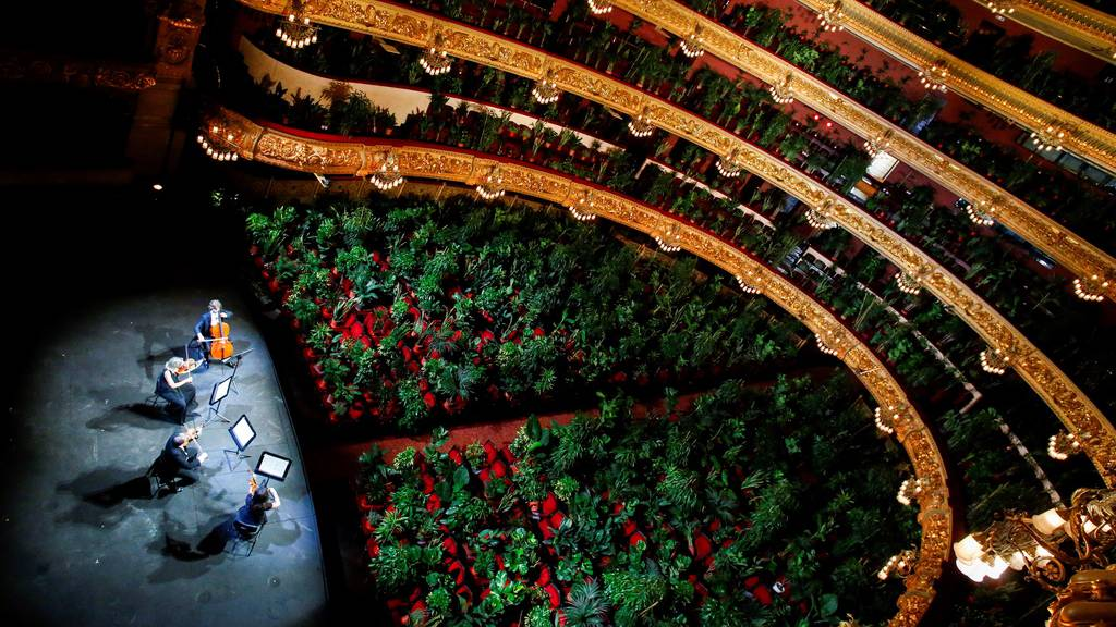 Hier sitzen über 2000 Pflanzen in der Oper