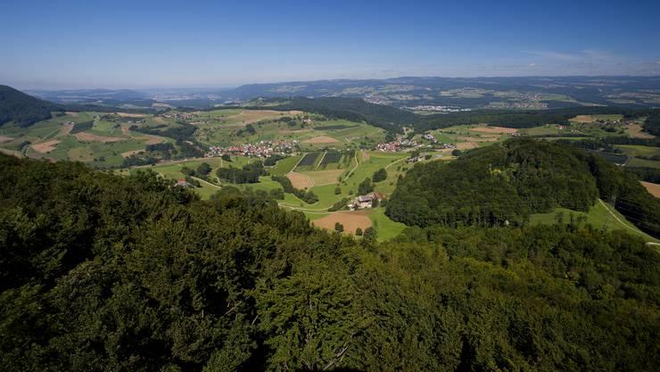 Blick vom Cheisacherturm, der im Gansinger Forst steht, gegen Nordwesten.