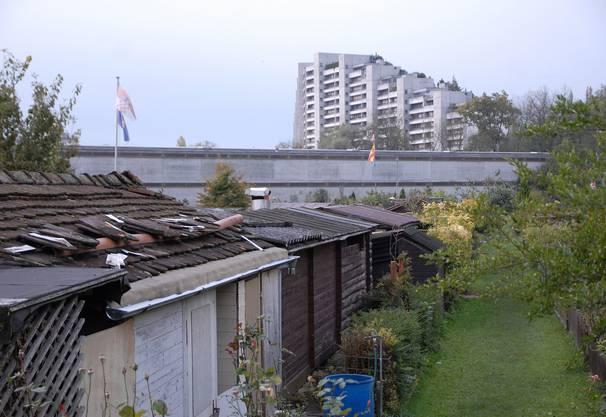 Blick über die Schrebergartensiedlung zum einen der Telli Hochhäuser, Oktober 2011.