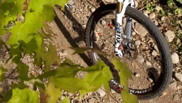 Ein Mountainbiker verletzte sich bei einem Sturz. (Symbolbild)