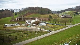 Beim Landwirtschaftlichen Zentrum Liebegg soll eine Asylunterkunft eingerichtet werden.