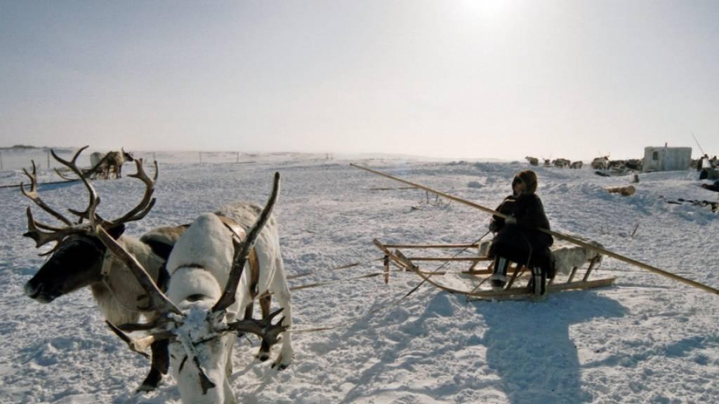 Hitzewelle in Sibirien setzte grosse Mengen Methan frei
