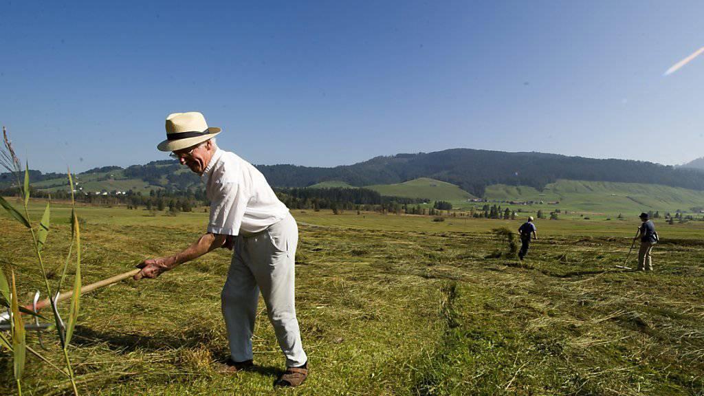 Arbeitszeiten von deutlich über 60 Stunden pro Woche sind auf Schweizer Bauernhöfen gang und gäbe. (Themenbild)