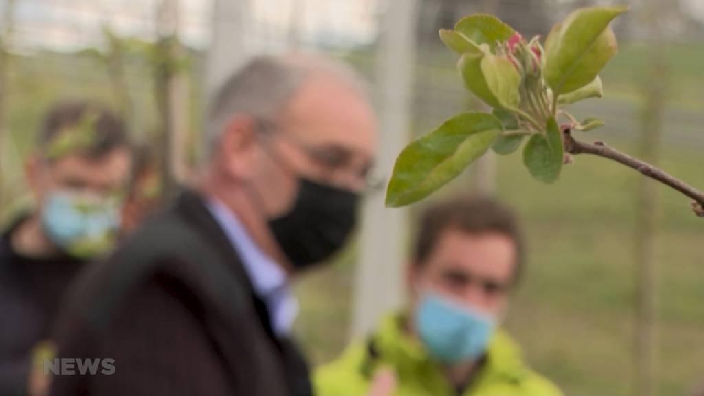 Mögliche Folgen der Trinkwasser- und Pestizidinitiative: Guy Parmelin besucht Biobetrieb