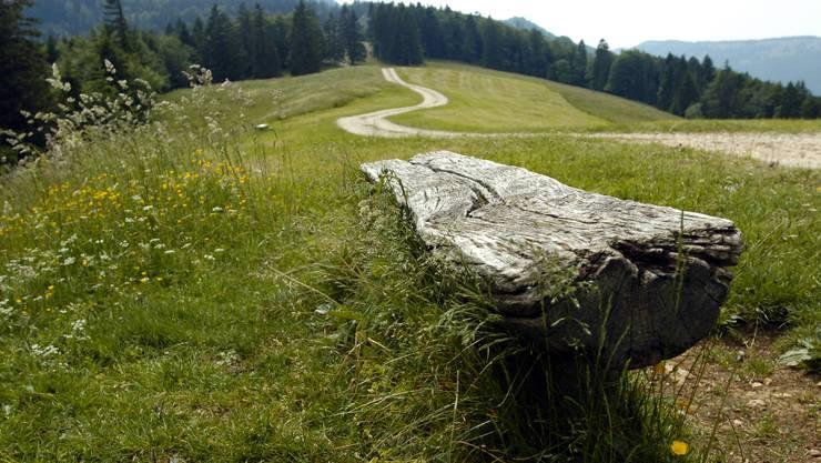 3. Etappe: 13,6 Kilometer von Oberdorf nach Grenchen.
