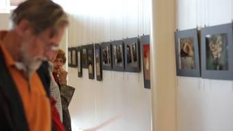 Senioren fotografieren das Limmattal