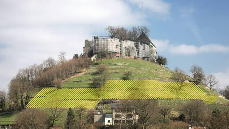 Mit der geplanten Erweiterung des Rebanbaugebietes (gelb schraffiert) wollen die Hobby-Winzer den Weinertrag verdoppeln.