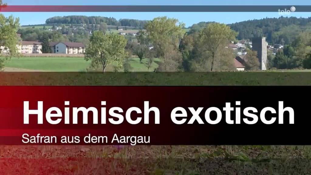 Heimisch exotisch - Safran aus dem Aargau