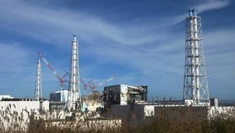 Das Atomkraftwerk Fukushima-Daiichi braucht mehr Kühlwasser (Archiv)
