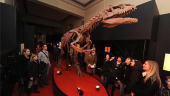 Sterben die Dinosaurier im Naturhistorischen Museum bald aus? Es droht die Schliessung wegen Asbest.