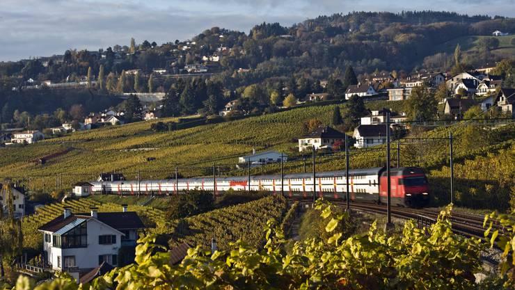 Wer diesen Herbst einen Ausflug mit dem Zug plant, kann dafür in über 20 Fricktaler Gemeinden eine SBB-Tageskarte kaufen.