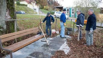 Die Seniorengruppe Sulz beim Einsatz auf der «Saxer-Alp». zvg