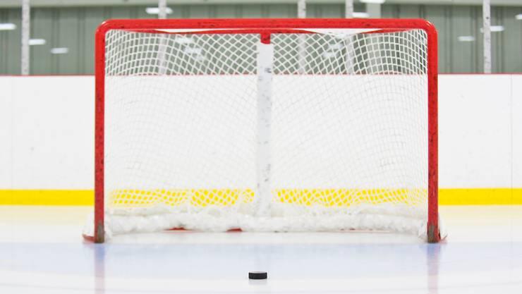 Eishockeytor