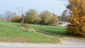 Das Grundstück Hüslimatt/Aabach in Küttigen steht als möglicher Standort für eine Aargauer Asyl-Unterkunft zur Diskussion.