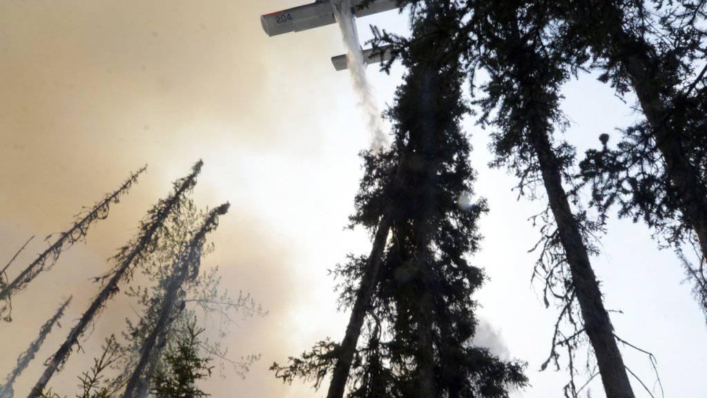 Ein Kleinflugzeug, das zum Versprühen von Pflanzenschutzmitteln eingesetzt wurde, stürzt in Brasilien auf einen Bus. (Symbolbild)