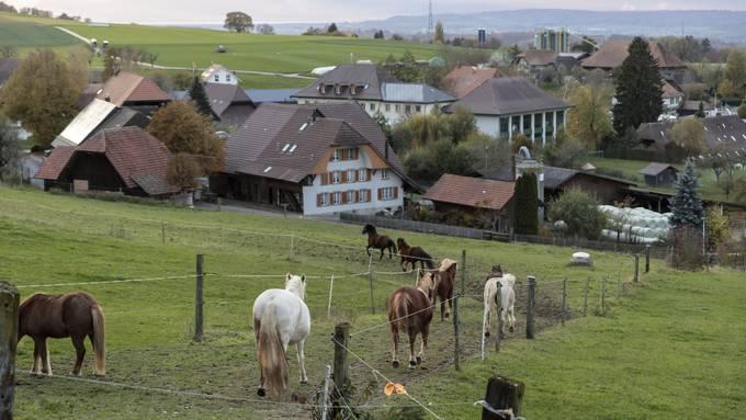 Auf den Hof statt in die Klinik: Das Berner Projekt Alp ist im Solothurnischen noch kaum bekannt.