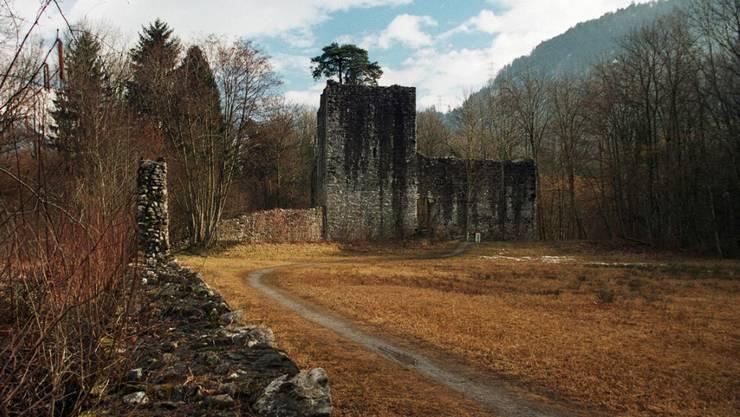 Bei der Ruine Weissenau brachten 2001 Rechtsradikale einen 19-jährigen Kollegen um. (Archiv)