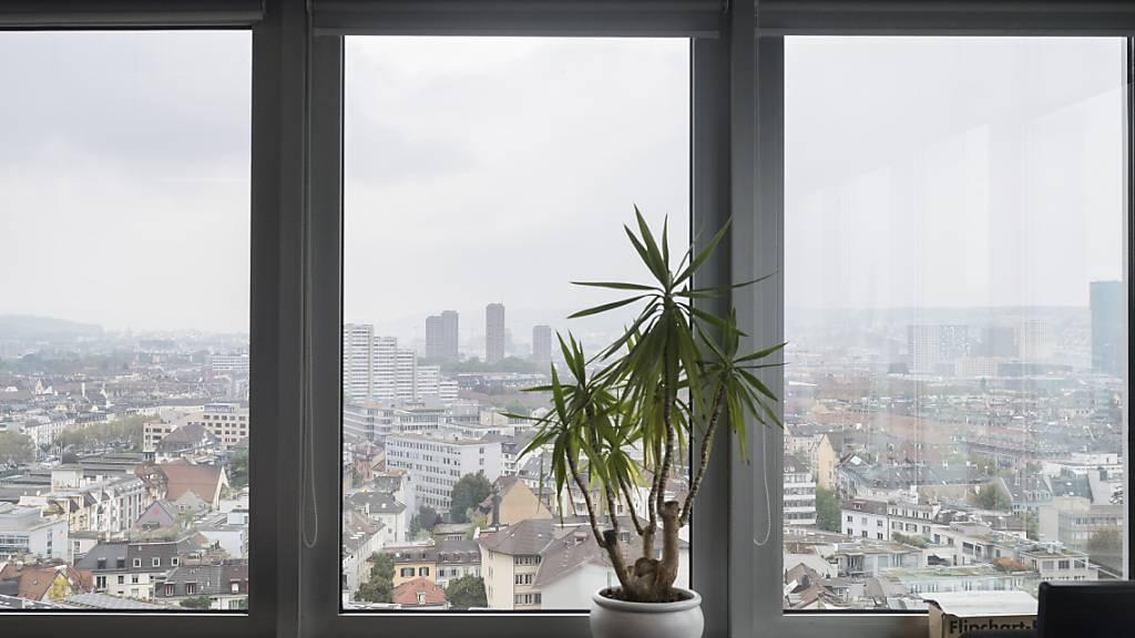 Zimmerpflanzen kein Wundermittel für sauberere Luft