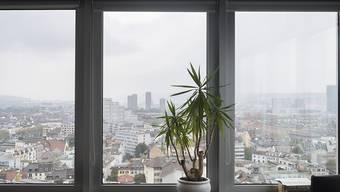 Luftaustausch in Zimmern senkt die Konzentration flüchtiger organischer Verbindungen wesentlich schneller als Pflanzen.
