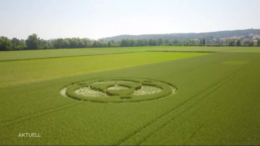 Kornkreis in Lüsslingen auf einem Weizenfeld