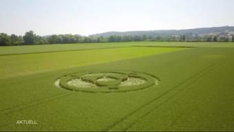 Auf einmal war der Kornkreis im Aarefeld in Lüsslingen da. Entstand der Kornkreis durch Ausserirdische oder doch durch Menschenhand? Tele M1 fragte auf der Strasse nach.