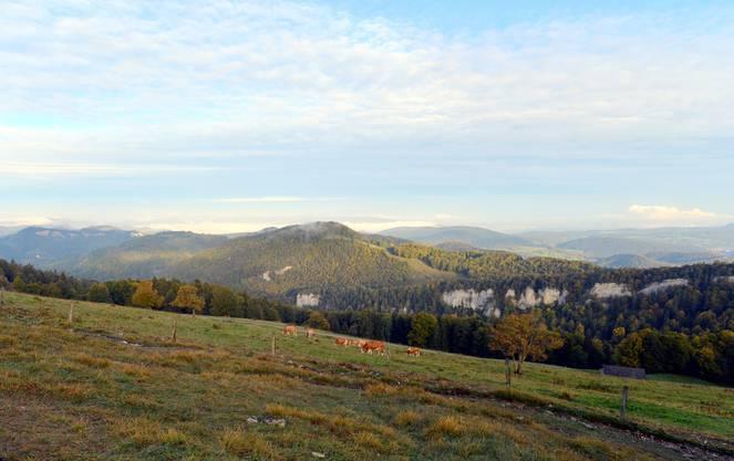 Herbstlicher Morgen auf dem Passwang