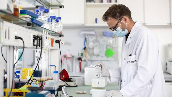 Marcel Walser, Teamleiter Covid-Projekt, bei der Anzucht einer Bakterienkultur im Labor von Molecular Partners , aufgenommen am Dienstag, 11. August 2020, in Schlieren.