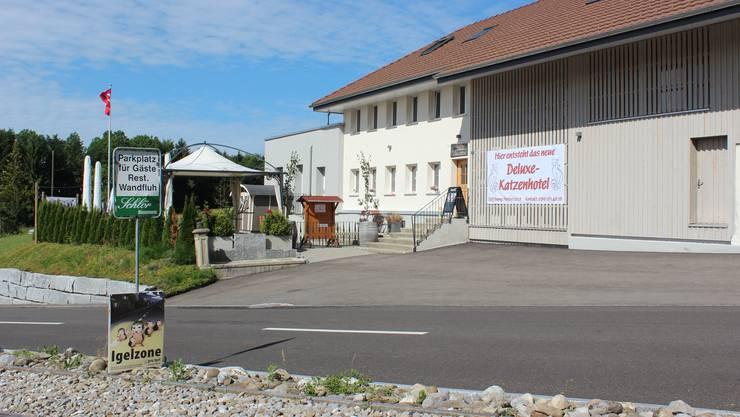 Das ehemalige Restaurant Wandfluh liegt an der Passstrasse zwischen Zetzwil und Leutwil. Bei klarem Wetter hat man hier einen tollen Ausblick.