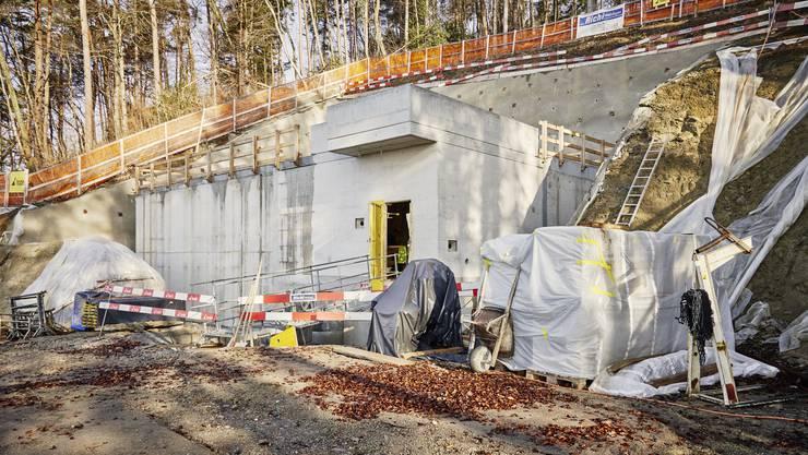 Das neue Reservoir entsteht im Gebiet Holeeberen in Weiningen, das am Westhang des Gubrist liegt.