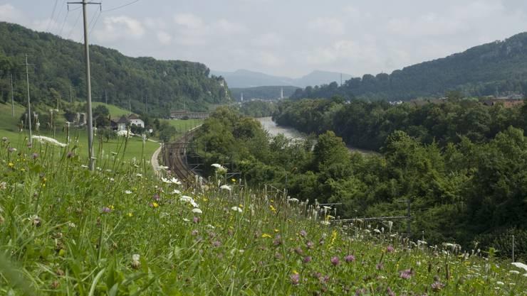Natrurraum Ruttiger: liebliche Matten oberhalb der Bahntrassees.