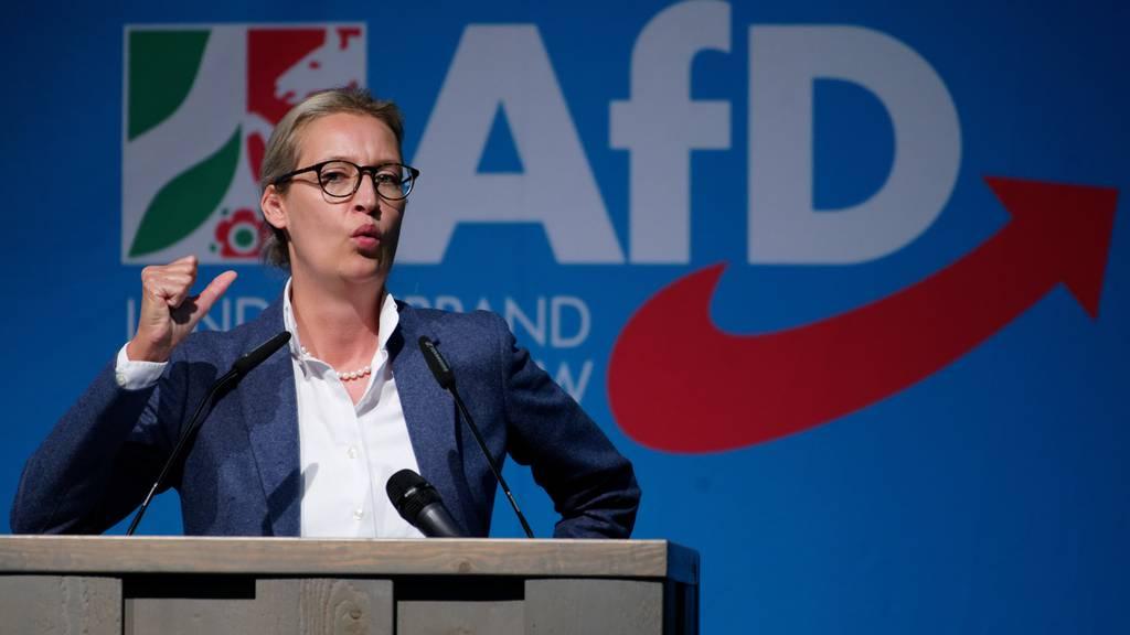 Illegale Spenden aus Schweiz:AfD soll über halbe Million Euro Strafe zahlen