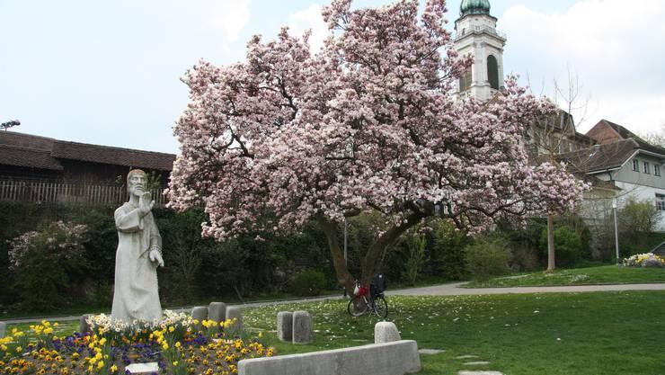 Neben der Bruder-Niklaus-Statue in Solothurn wird der Friedensstein installiert.