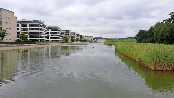 Der künstliche Badesee beim Opfiker Glattpark wird durch Regenwasser gespeist.