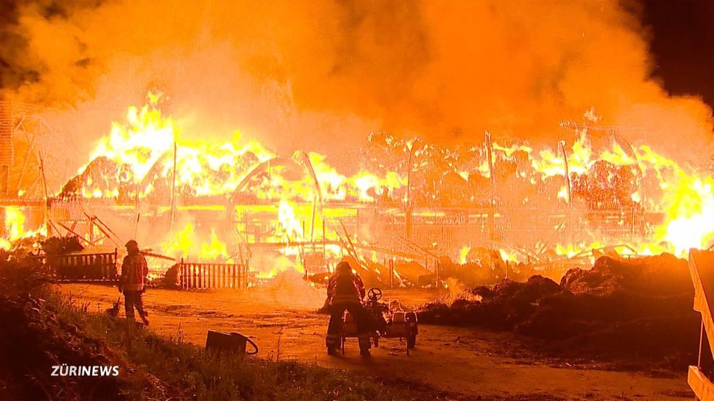Grossbrände in Frauenfeld und Stetten