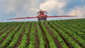 Für den Export von Pflanzenschutzmitteln gelten künftig strengere Regeln. Das hat der Bundesrat am Mittwoch beschlossen.