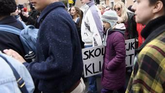 Klimakundgebung am 17.1.2020 mit Greta Thunberg in Lausanne