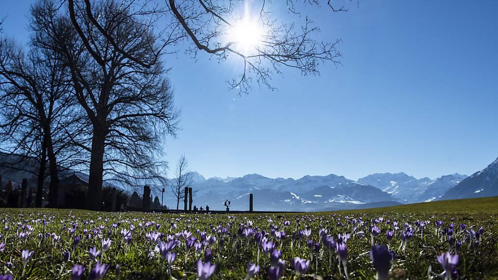 Der Dienstag war ein selten warmer Februar-Tag. In Chur wurden sogar über 20 Grad Wärme gemessen. (Archivbild)