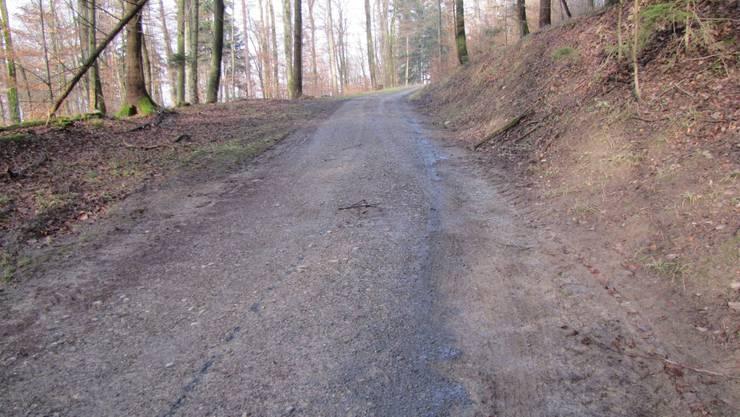 Auf dem Waldweg ist eine Ölspur zu sehen.