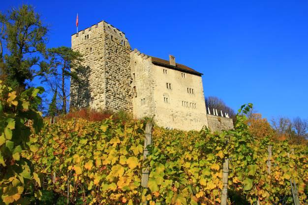 """Trotz """"Winterzeit"""" ein wunderschön sommerlicher Herbsttag auf der Habsburg."""