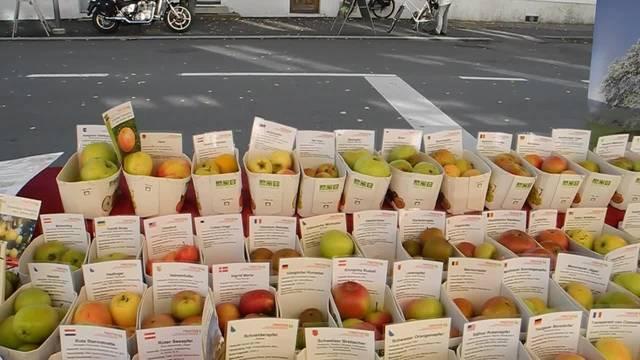 Eindrücke vom Obstmarkt