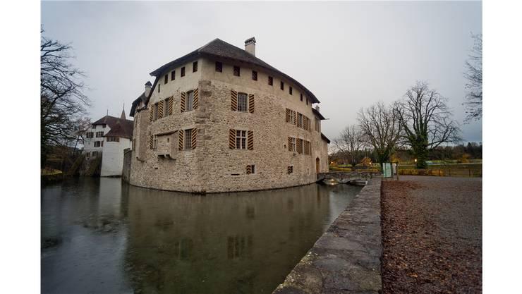 Lockt nicht gerade zum Reinspringen: Der Burggraben ums Schloss Hallwyl in Seengen.