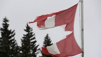 Einige Demonstranten zündeten eine Schweizerflagge an.