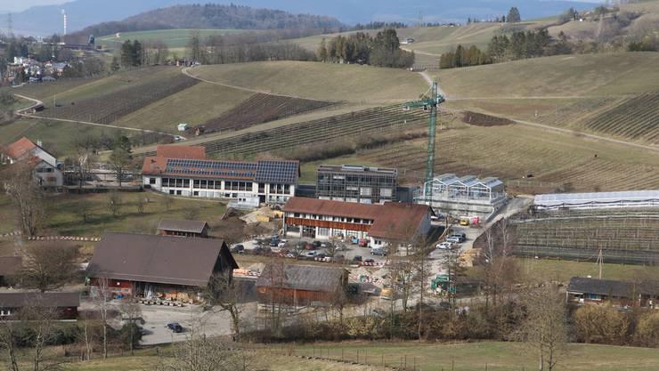 Derzeit wird das Gewächshaus – im Bild hinten rechts – verglast.