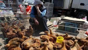 Keine Anzeichen von kranken Tieren: Hühner-Händlerin in Ost-China (Symbolbild)