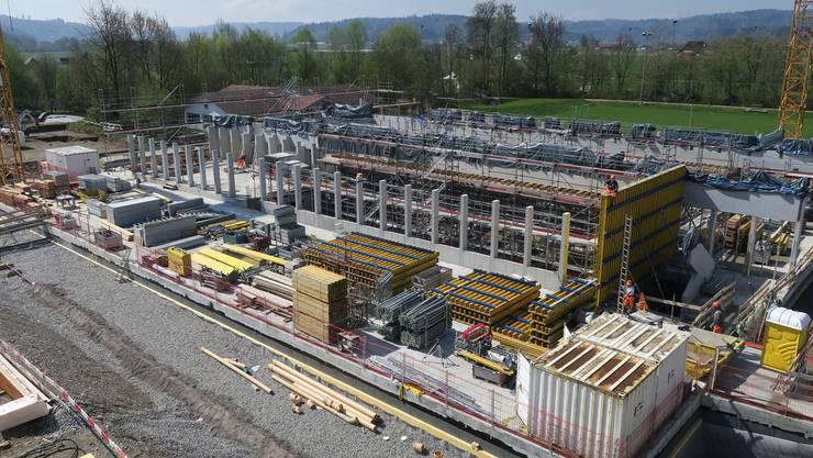 Auf die Beton-Stützenreihen entlang der Doppelturnhalle werden Ende Mai erste Deckenelemente aufgesetzt. Flurina Dünki