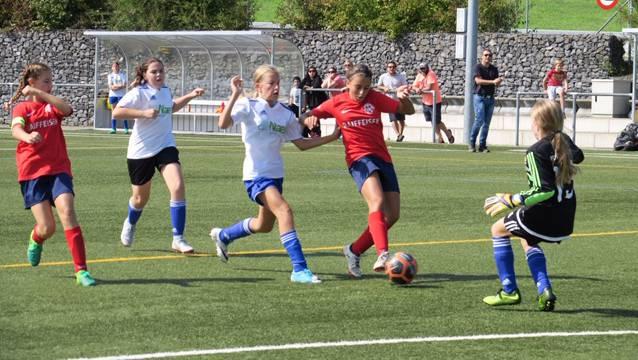 Vergangene Saison trat das 2017 gegründete D-Juniorinnenteam des FC Birmensdorf erstmals in der Meisterschaft an. In ihrer Gruppe erreichten die Birmensdorferinnen auf Anhieb den zweiten Platz.