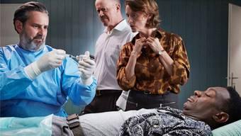Der Tierarzt behandelt den Papierlosen im Keller der Gähwilers. ho
