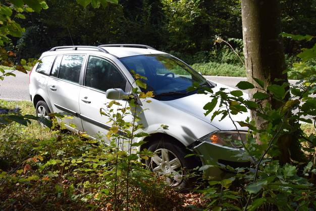 Der Lenker bremste seinen Renault Mégane  ab und steuerte nach rechts um eine Kollision mit einem entgegenkommenden Fahrzeug zu verhindern, dabei prallte er in einen Baum.